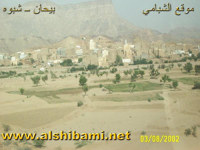 صور  من  بلادي اليمن  الحبيب 201